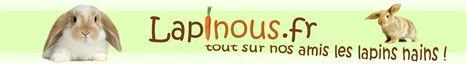Le site de lapinou.fr